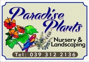 Paradise Plants & Landscaping